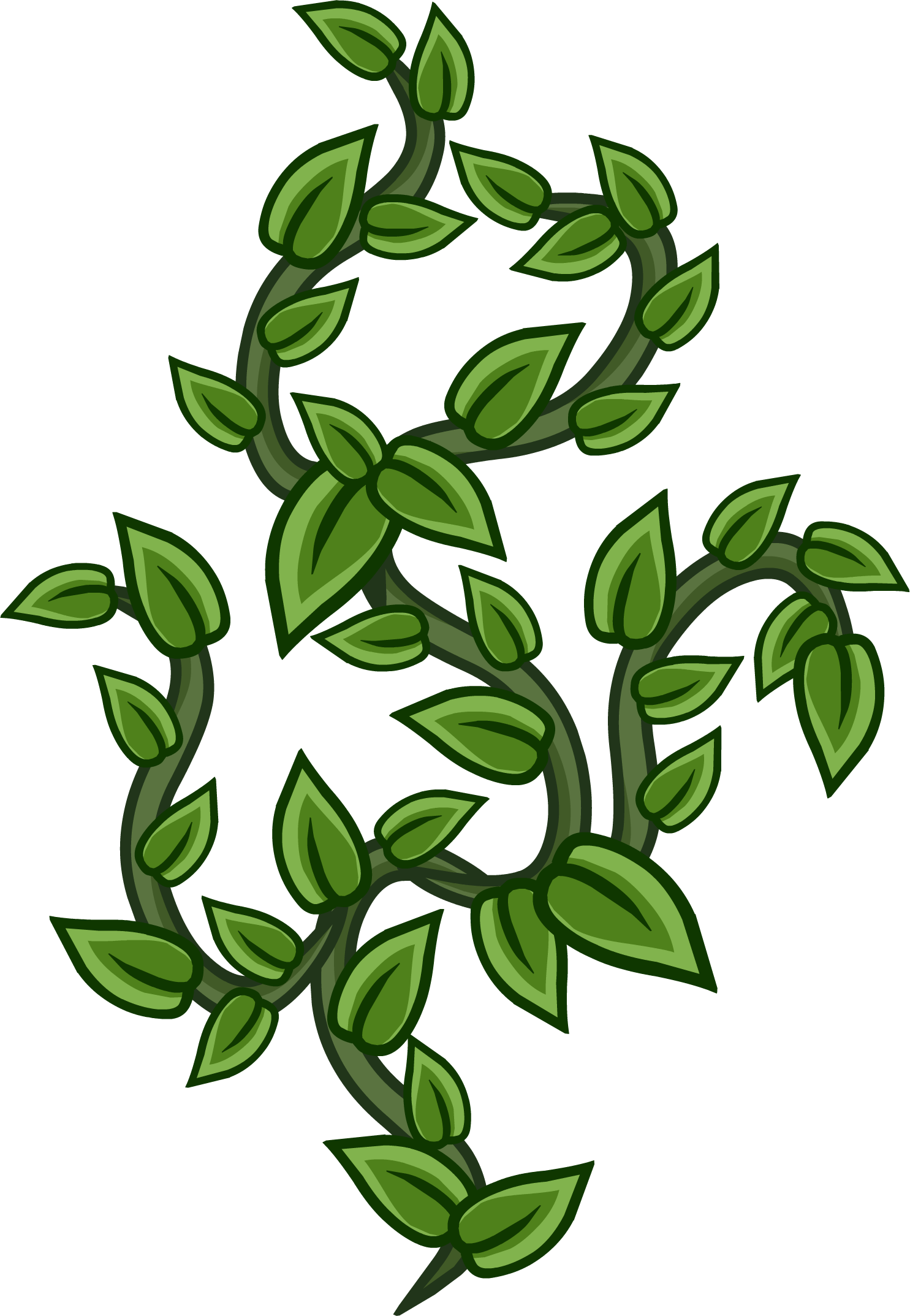 Vines png. Image club penguin wiki picture transparent library