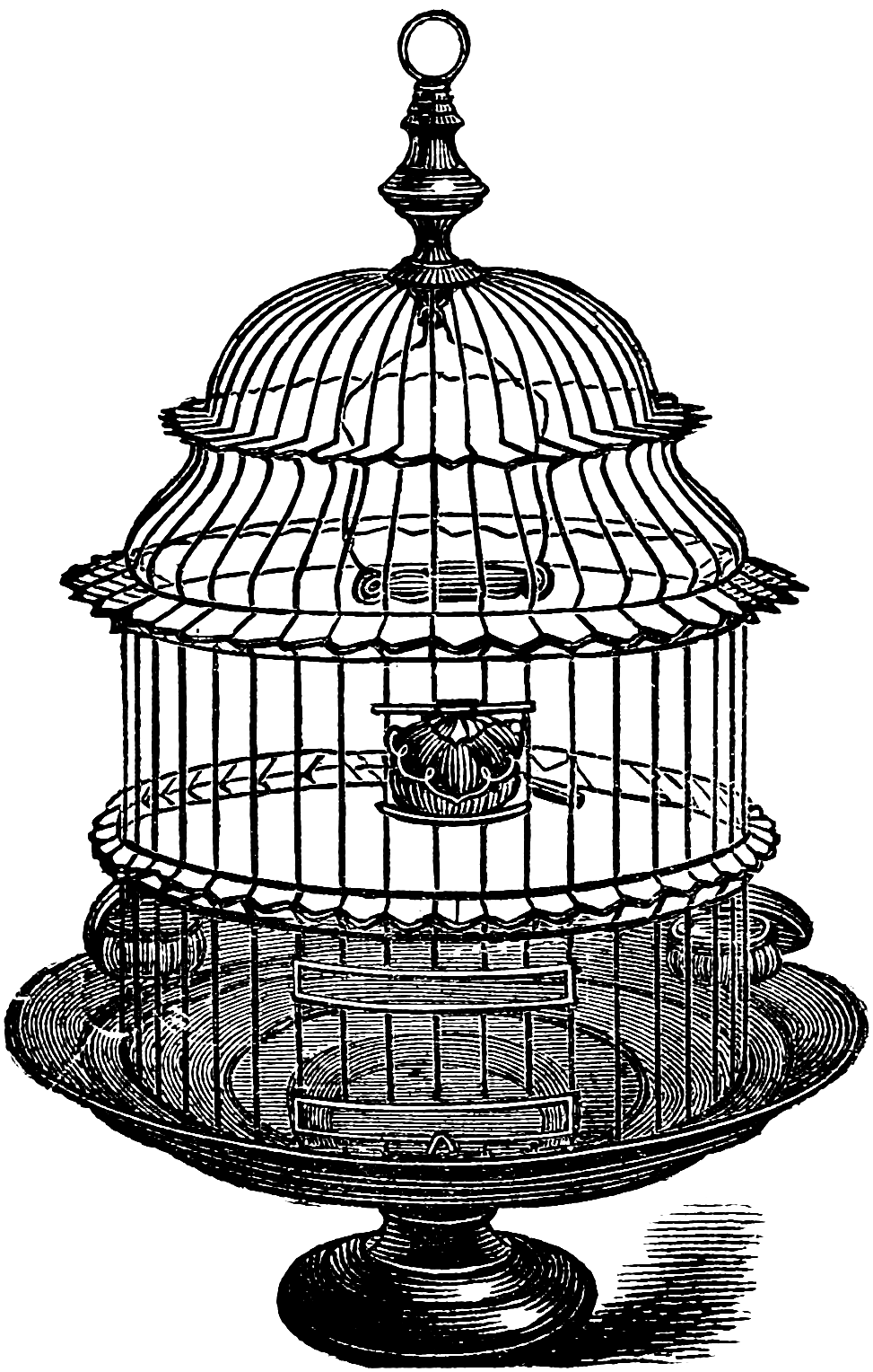 Vintage bird cage png. Another set of stock
