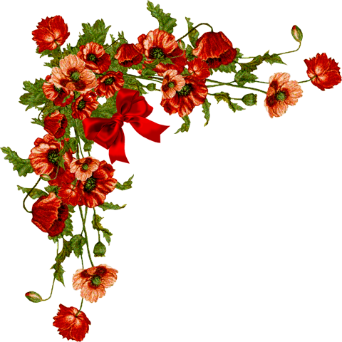 Corner transparent red floral. Flower cliart poppies png