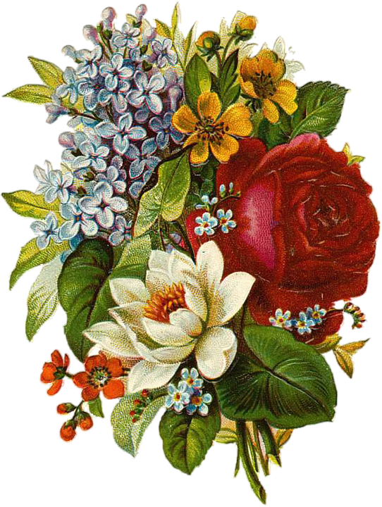 Vintage floral png. Images in collection page