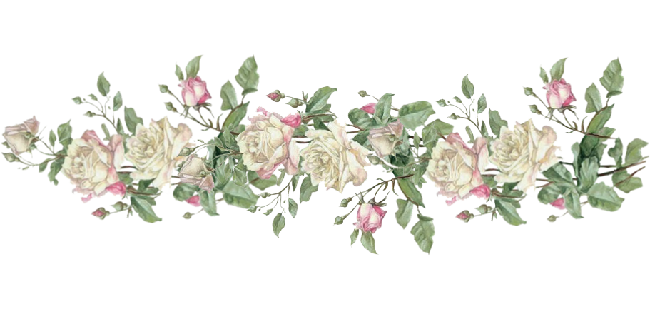 Vintage flower border png. Digital rose post divider