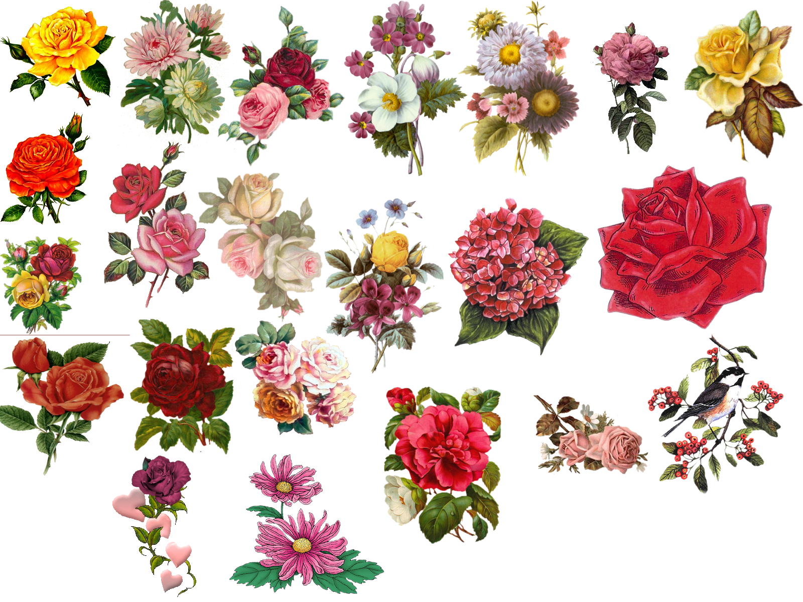 Pictures beautiful flowers hcthc. Vintage flower vector png clip art black and white library