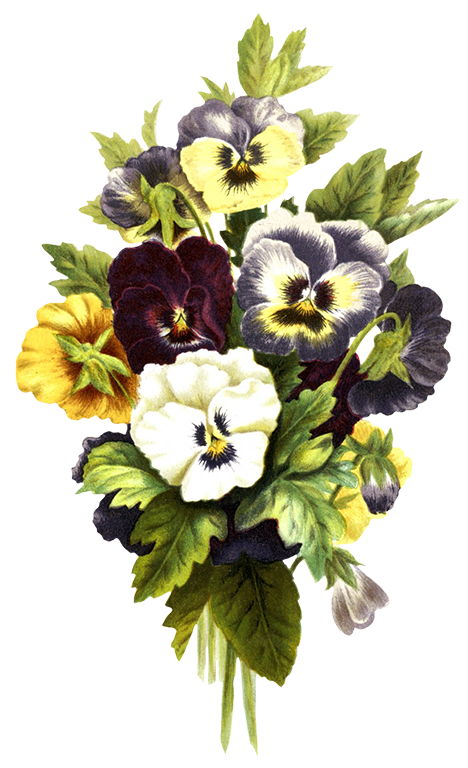 Vintage flowers bouquet png. Free flower clipart pink