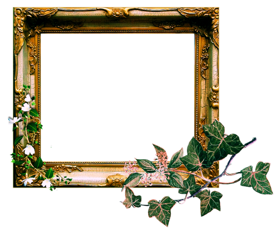 Vintage picture frame png. Ornate by sophia t