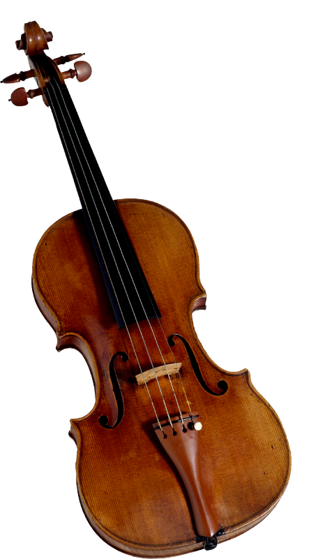 Cello vector transparent background. Violin png images free