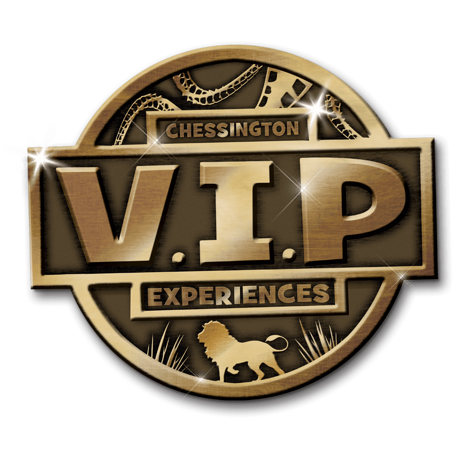 Vip badge png. Christmas experiences be a