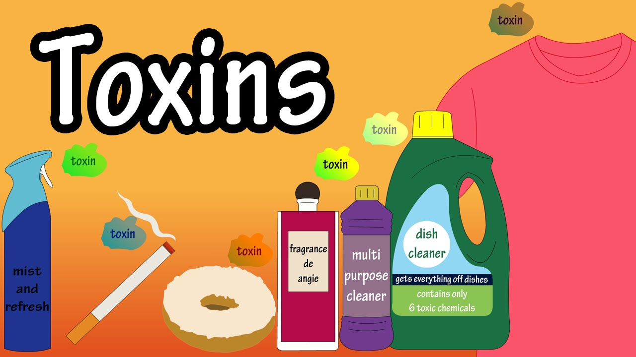 Virus clipart toxin. Toxins in the body