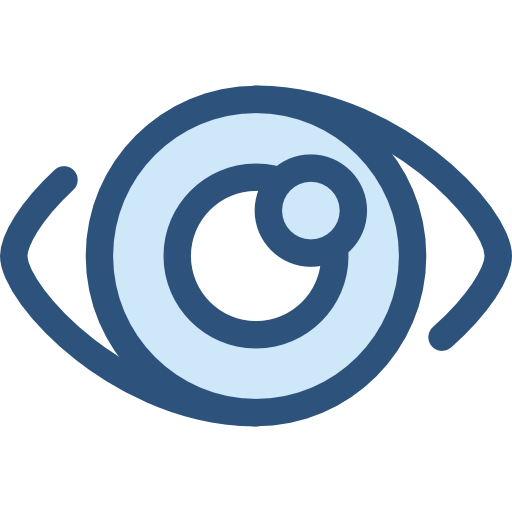 Vision icon png
