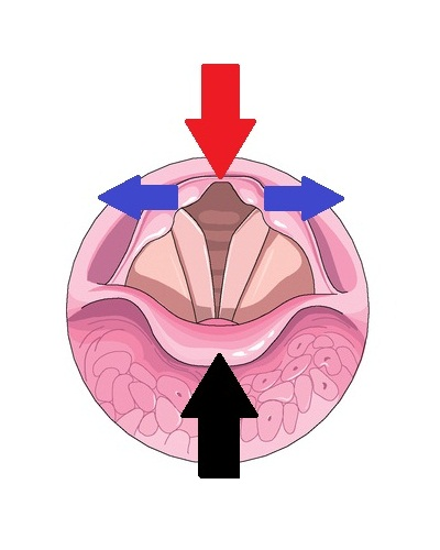 Voice clipart deep voice. What causes a breathy