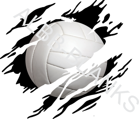 Volleyball clip blank. Transfers albb blanks clawed