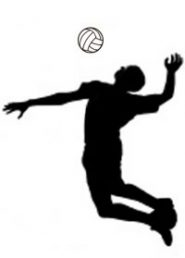 Volleyball clipart indoor volleyball. Adult co ed league