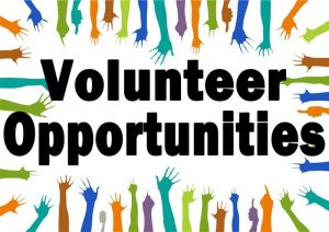 Volunteers needed clipart board member. For city architectural review