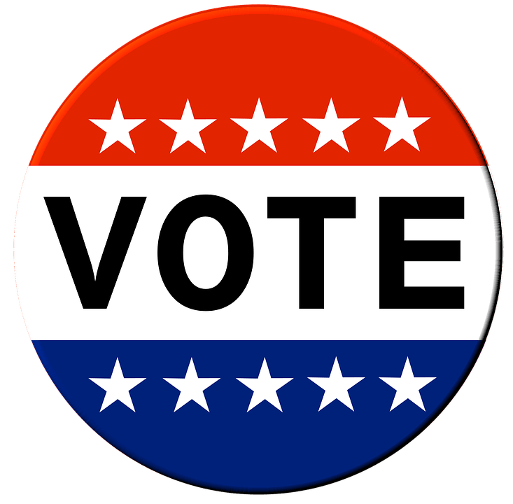 Vote drawing civics. Information literacy school librarian