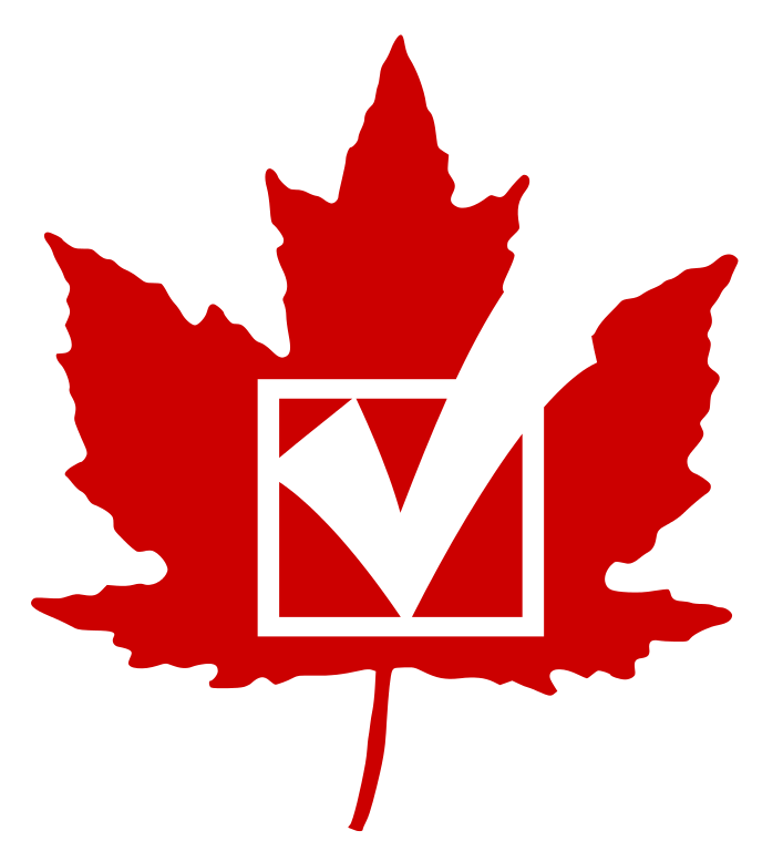 Voting clipart political right. File can vote stub