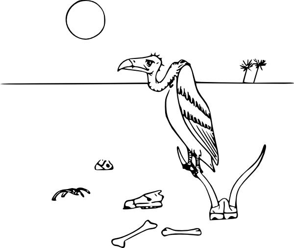 Vulture clipart draw. Clip art at clker