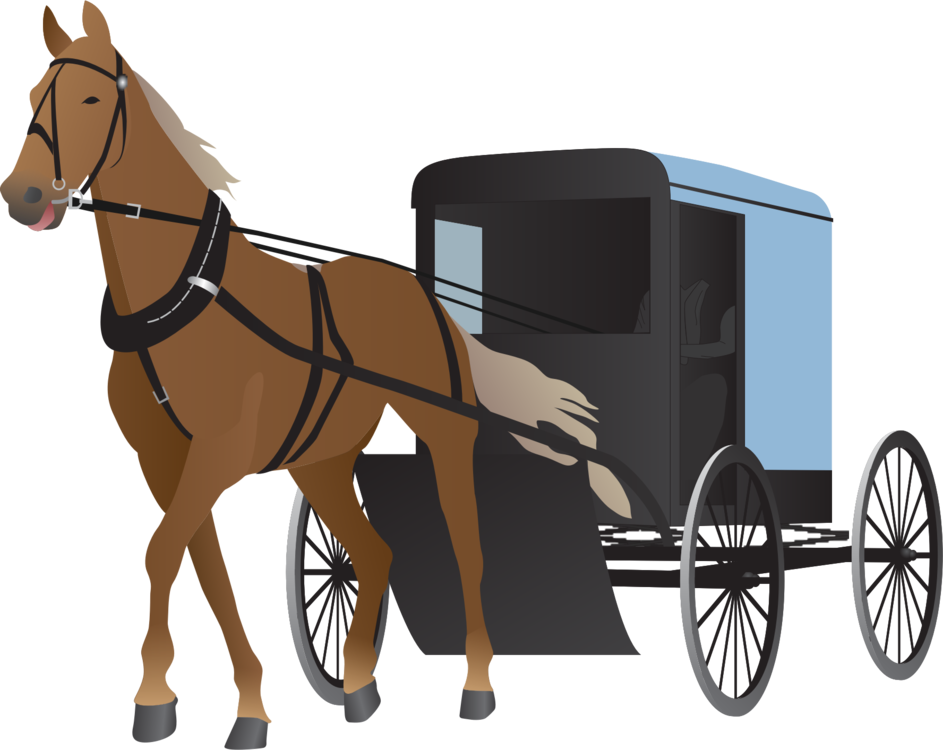 Wagon vector horse carriage. And buggy drawn vehicle