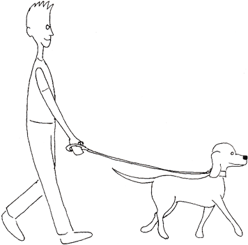 Walk drawing. Collection of walking