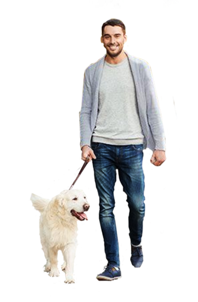Person walking dog png. Man official psds share