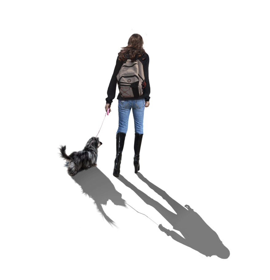 Walking dog png. Figure stock cast shadows