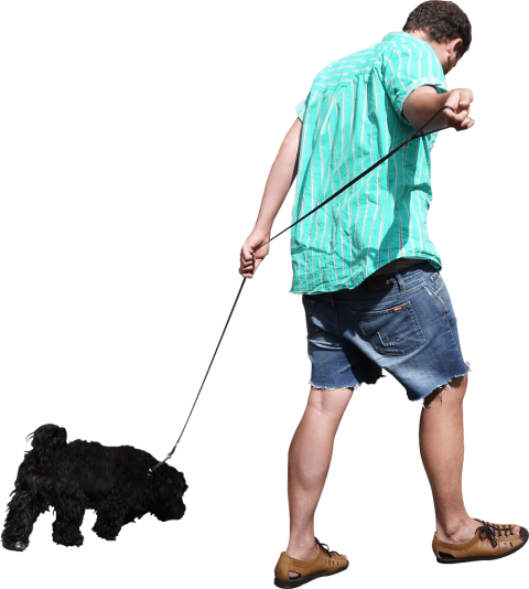 Walking dog png. The free images toppng
