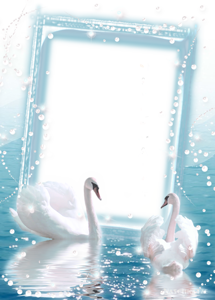 Wall clipart photoframe. Transparent photo frame with