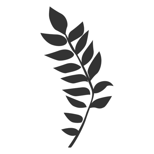 Manchurian leaf line style. Walnut vector png royalty free download