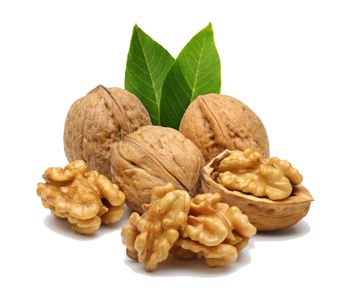 Nuts transparent walnut. Vector clipart psd peoplepng