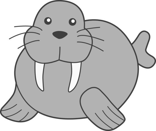 Walrus clipart image free
