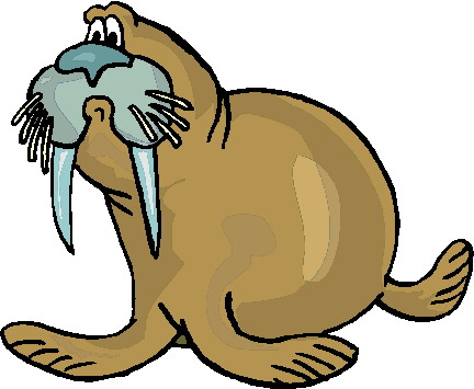 walruses animated images. Walrus clipart jpg freeuse library