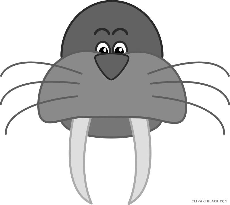 Clipartblack com animal free. Walrus clipart banner library