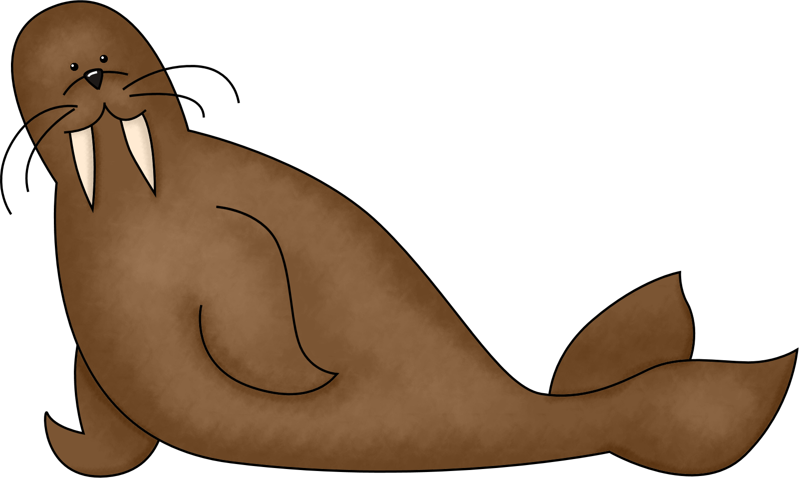 Walrus clipart outline. Free cliparts download clip