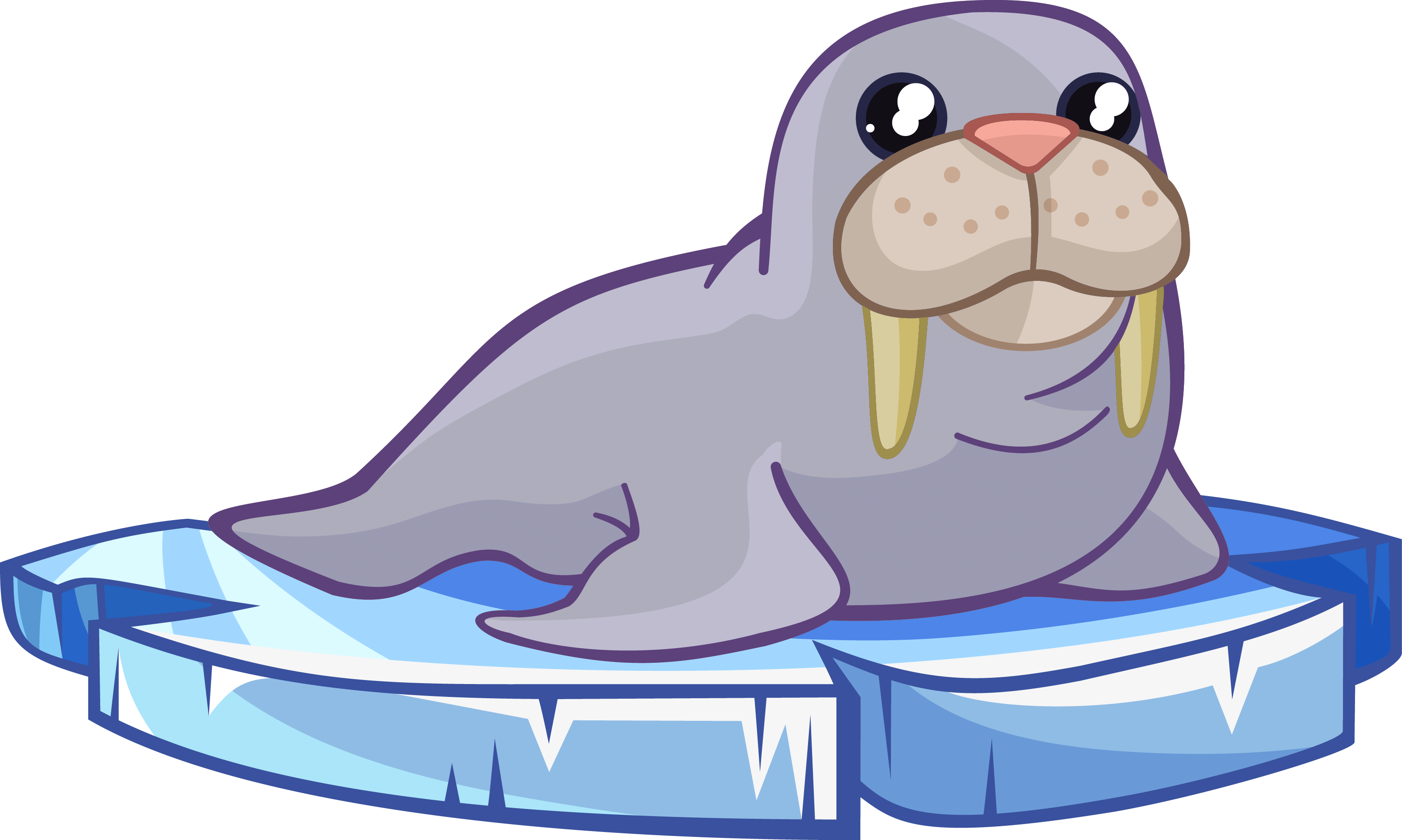Walrus clipart outline. Cute black and white