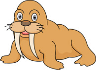 Walrus clipart tusk. Search results for clip