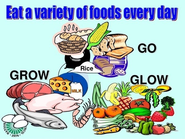 Want clipart basic food. Why do we eat
