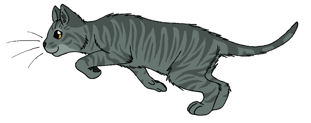 Warrior cats png. Image bloomheart cat wiki
