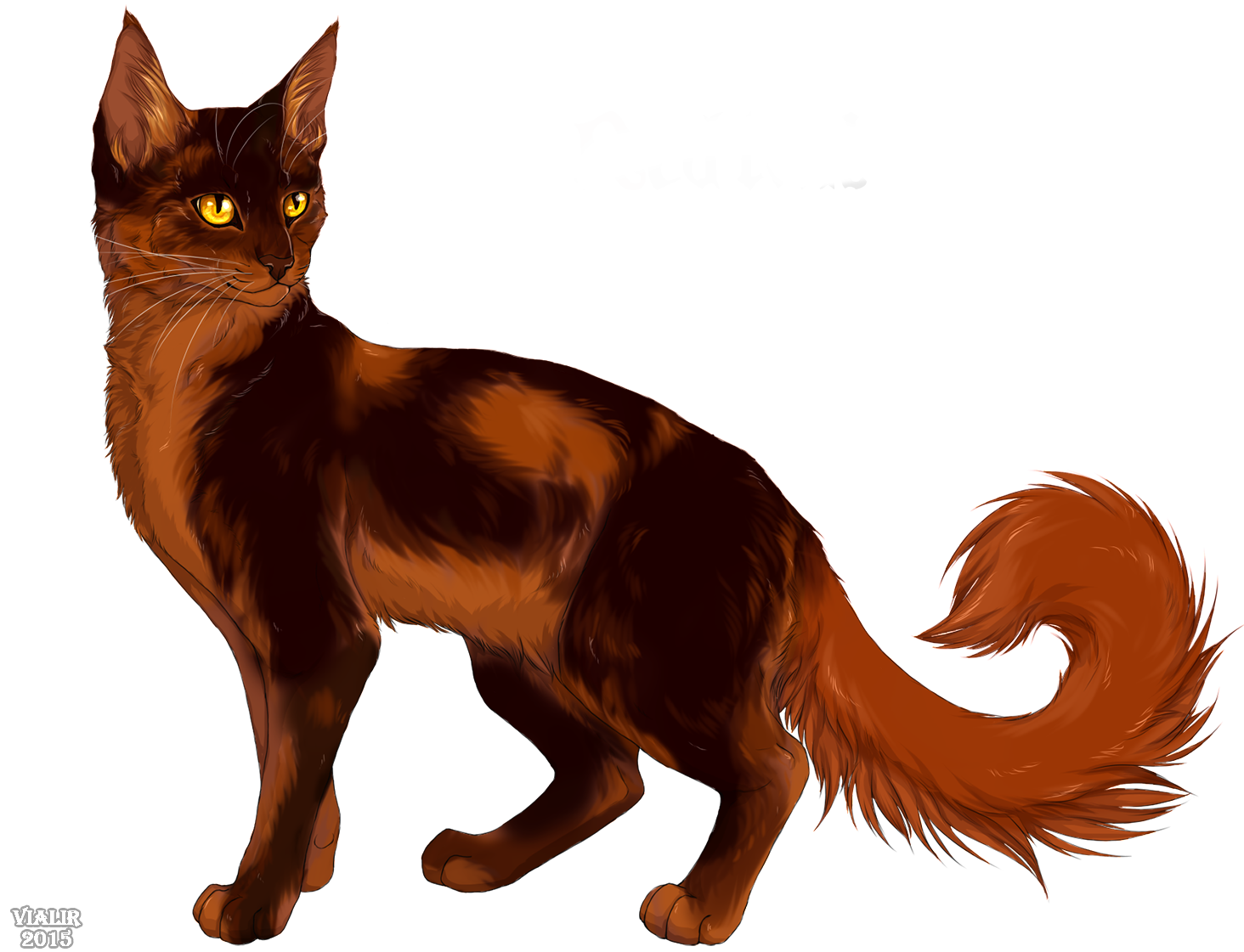 Warrior cats png. Image redtail cat wiki