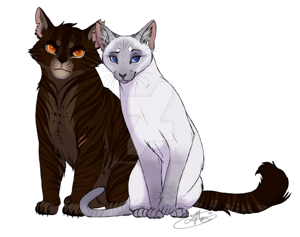 Warrior cats png. Image cat oc s