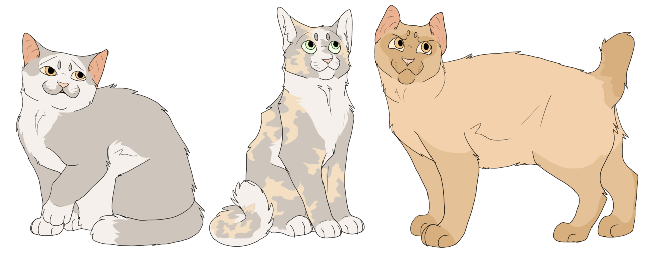 warrior cats babies png