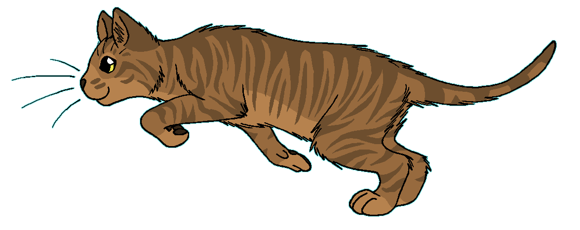 Warrior cats png. Image adderfang cat wiki