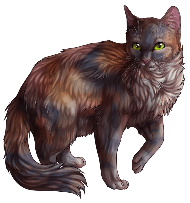Warrior cats png. Image mysticmoon free realms