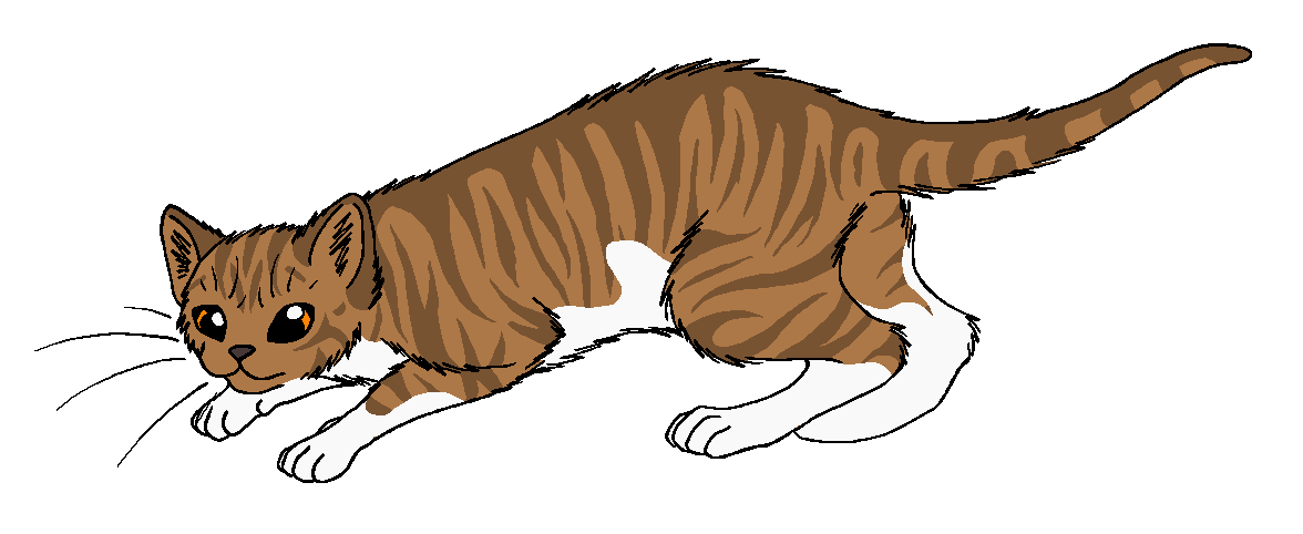 warrior cats png thunder and shadow