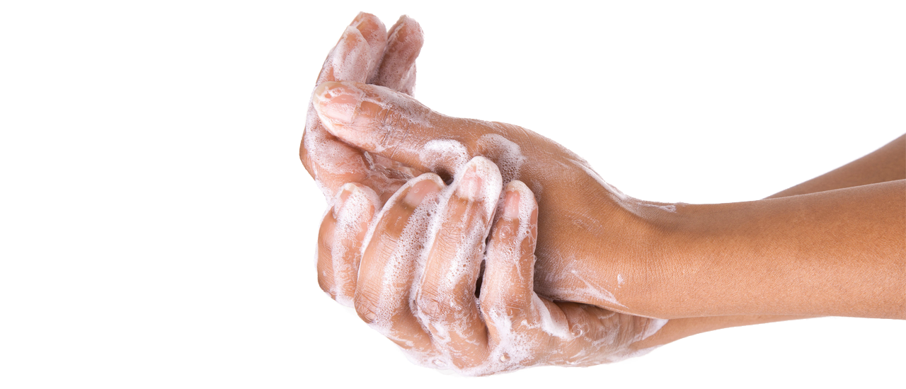 Washing hands png. Hand transparent images pluspng