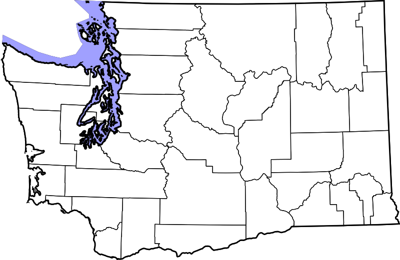 Washington state outline png. File map of counties