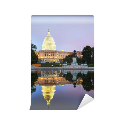 Washington vector united states capitol. Building in dc wall