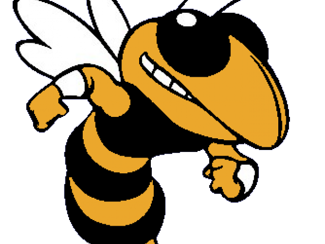 Wasp vector angry cartoon. Collection of free hornet