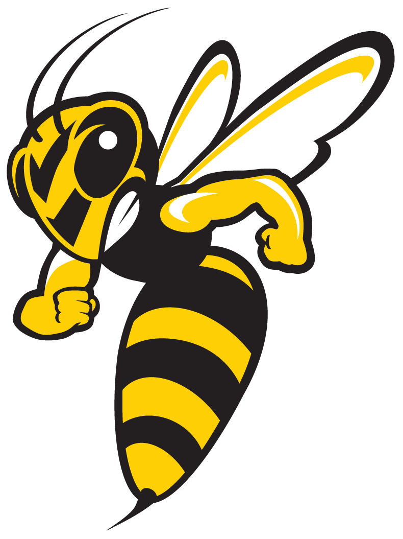 The top things about. Wasp vector angry cartoon picture transparent download