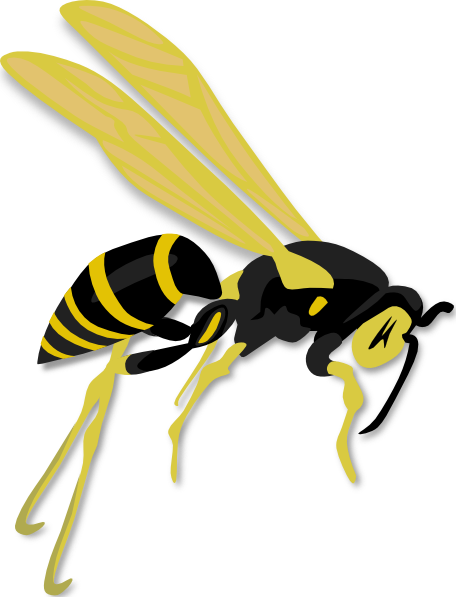 hornet clip free. Wasp vector hornets nest clipart royalty free library