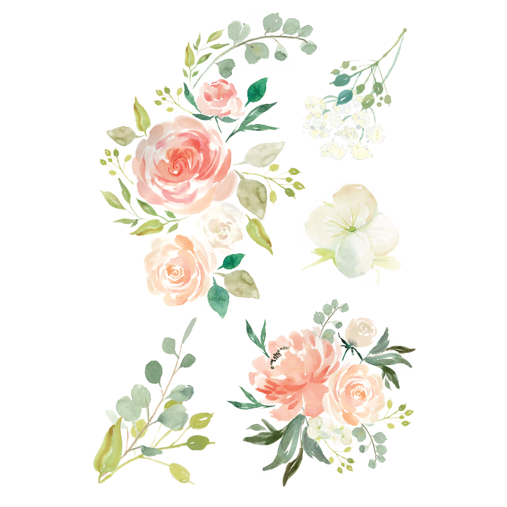 Watercolor rose png. Image flowers animal jam