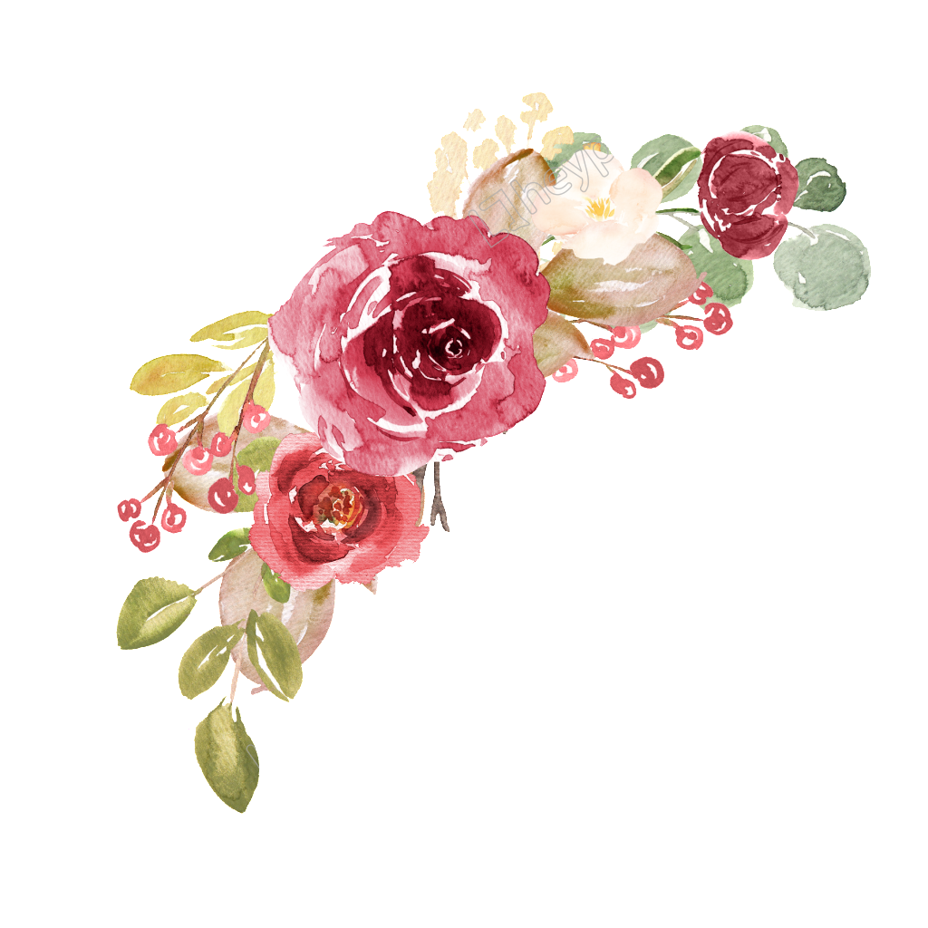 Watercolor flowers png. Vector pictures and cliparts