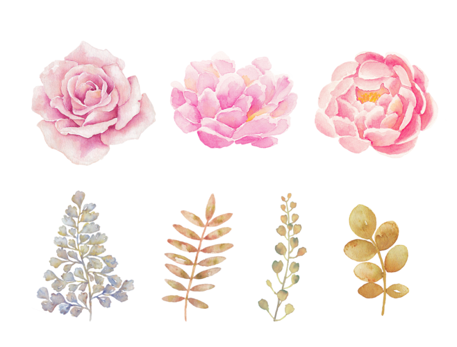 Watercolor flowers png. Transparent background mart